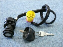 Ignition switch ( ATV 250 )