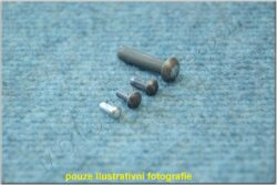 Round Head Rivets 3x12 DIN 660